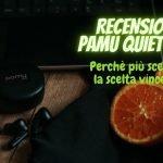 Pamu Quiet Mini